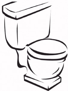 low-flow-toilet-227x300